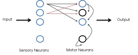 neurons the basic elements of behavior Neurons basic elements of behavior essay paper buy custom neurons basic elements of behavior essay paper cheap order neurons basic elements of behavior essay for sale, pay for neurons basic elements of behavior essay paper sample online, neurons basic elements of behavior essay writing service.